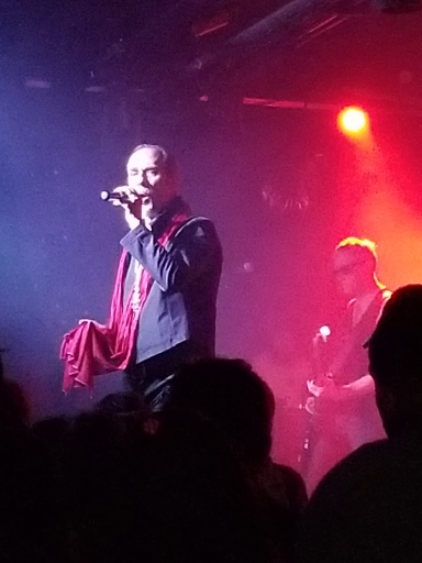 Peter Murphy singing red scarf by Veronica Campbell