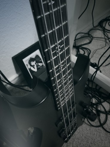 bass for article DWP